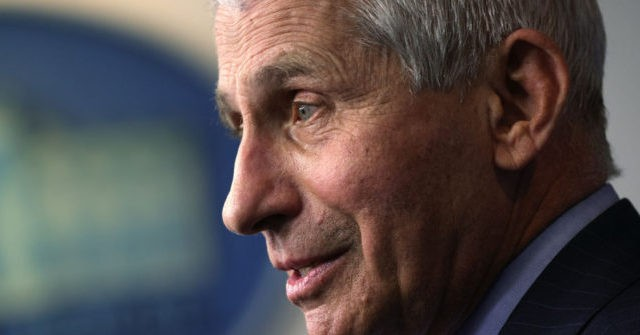 , White House Backs 'Incredible' Dr. Anthony Fauci; Refuses Comment on Explosive Emails, Nzuchi Times Breitbart