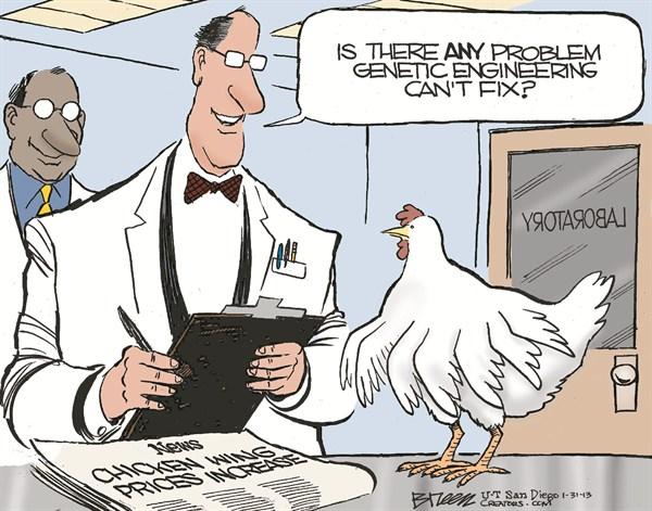 126461 600 Chicken Wings cartoons