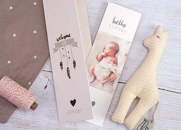 Babykarten online gestalten  Carteland