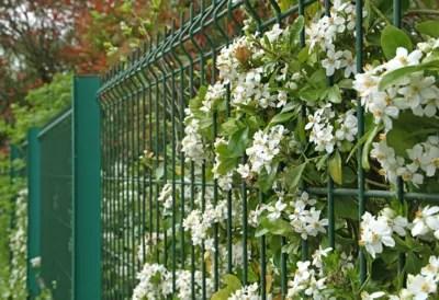 Grillage Opaque Jardin