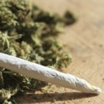 More calls to decriminalise ganja