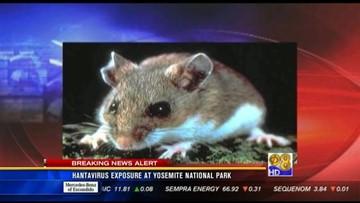 Yosemite officials say 1,700 visitors risk disease | cbs8.com