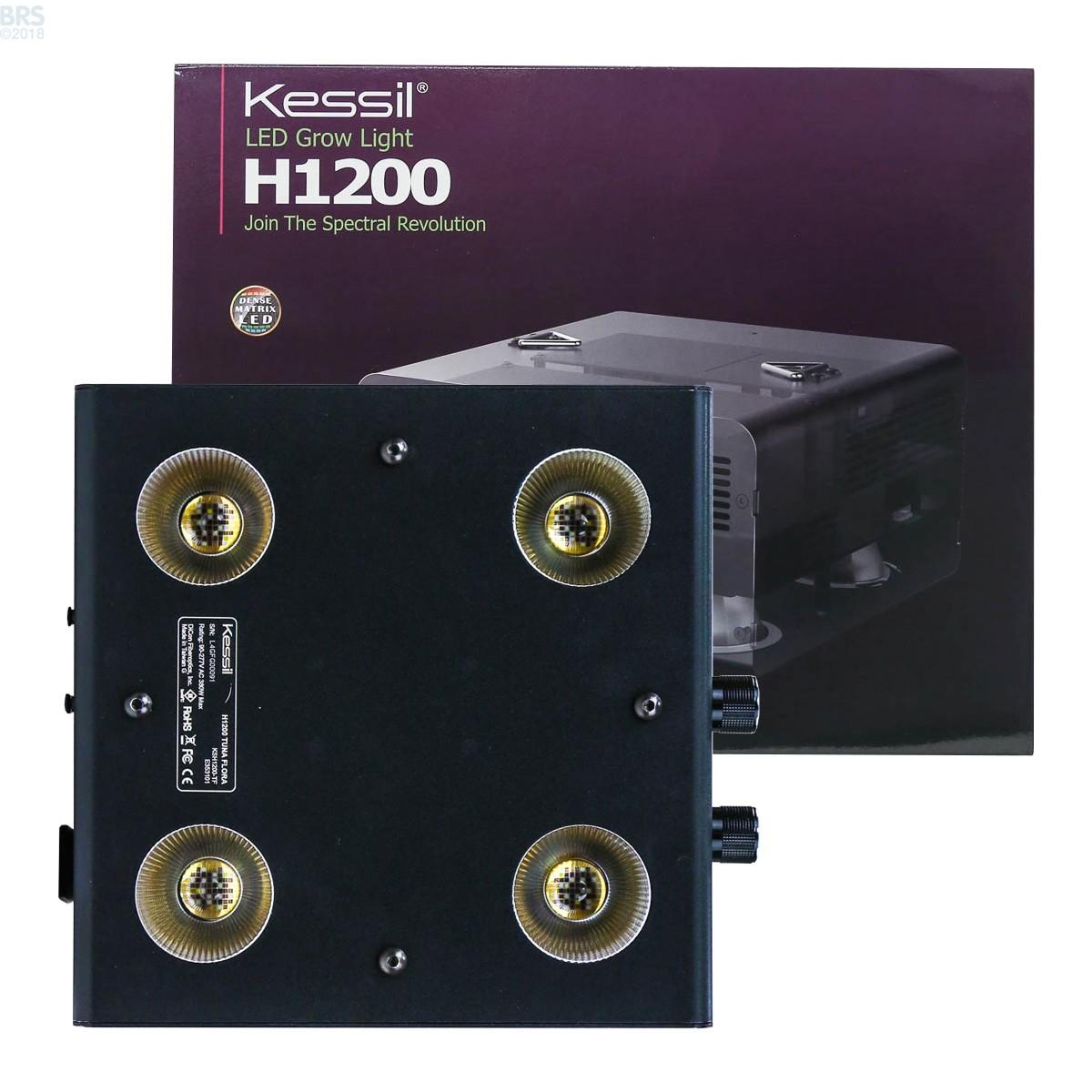 Kessil Led Grow Light 350 Review