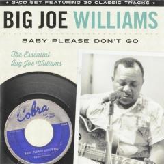 Baby please don't go - Big Joe Williams - Muziekweb