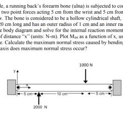 Forearm Bones Diagram 2005 Ford Escape Alternator Wiring Solved Problem 1 During A Tackle Running Back S Forea Backs Bone Ulna Is