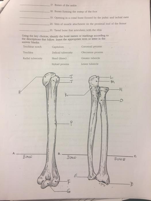 Biology Archive   April 11 2017   Chegg.com