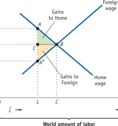 foreign wage wage w gains to home gains to foreign home wage world amount of [ 1024 x 774 Pixel ]