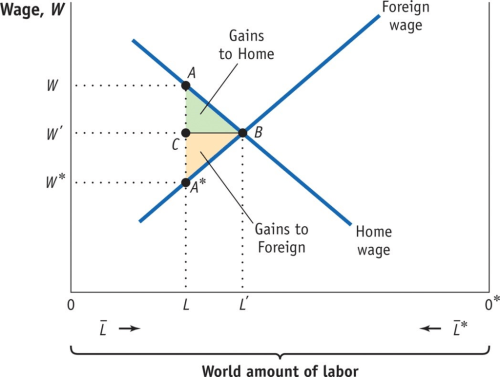small resolution of foreign wage wage w gains to home gains to foreign home wage world amount of