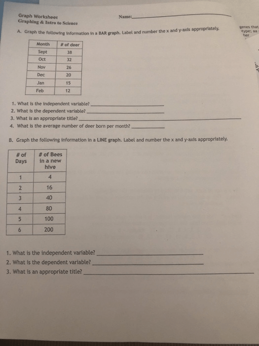 Graph Worksheet Graphing And Intro To Science : graph, worksheet, graphing, intro, science, Solved:, Graph, Worksheet, Graphing, Intro, Science, Name:, Chegg.com