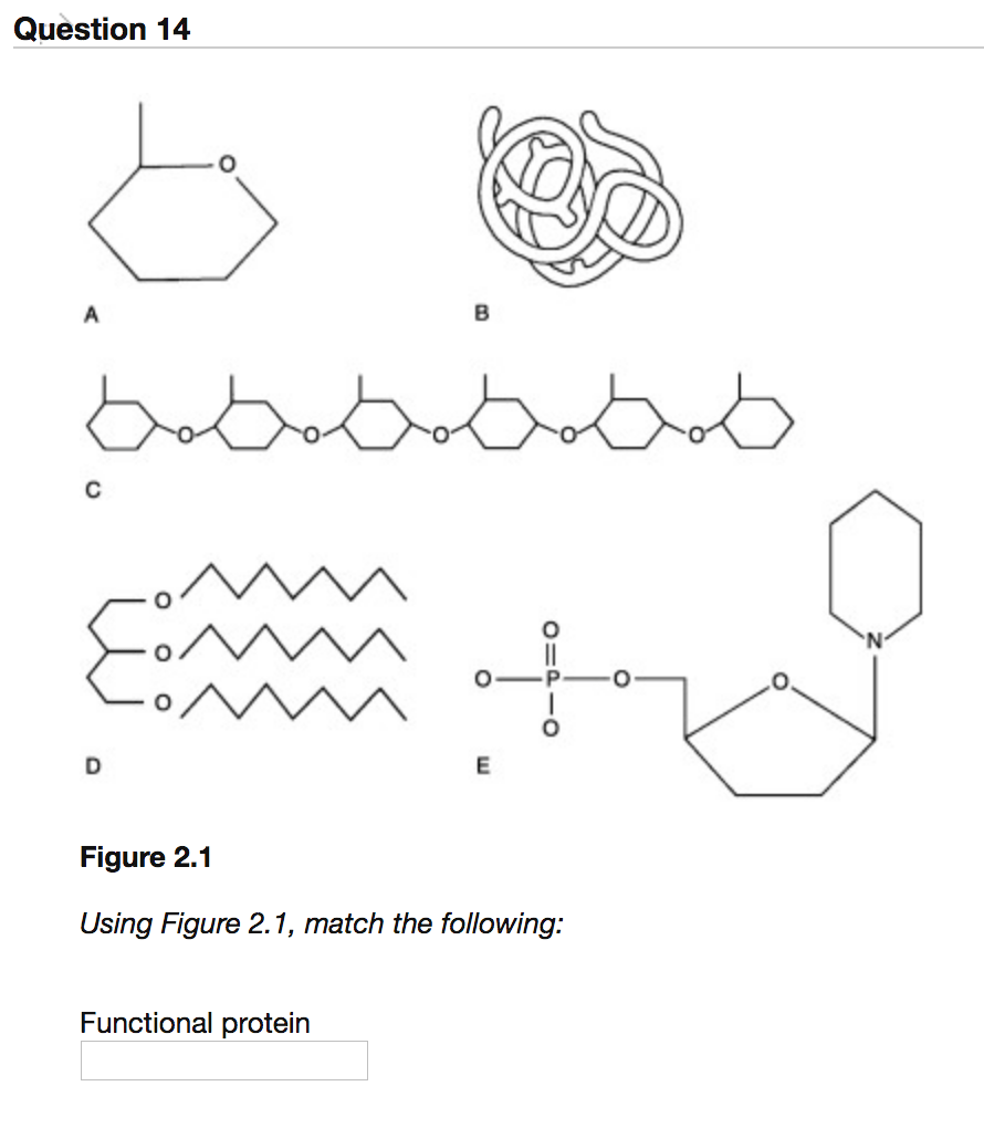 Solved: Question 14 0 0 Figure 2.1 Using Figure 2.1, Match