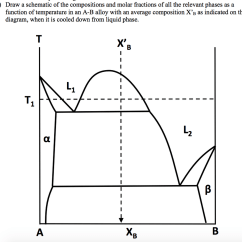 How To Draw A Phase Diagram 2001 Dodge Ram 3500 Wiring Solved Question 4 Schematic Of The Image For Compositions And Molar