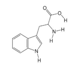 Solved: 6.Tryptophan, An Essential Amino Acid, Is Importan