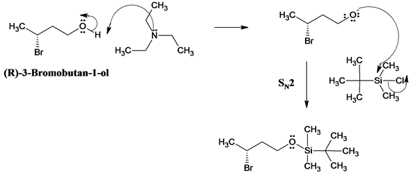 Solved: The trimethylsilyl (TMS) protecting group is one