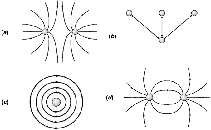1) The Electric Field Lines Around An Electrical