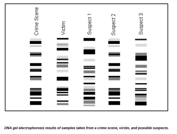 Solved: Post-Lab Questions Use Your Data To Identify The C