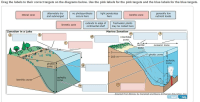 Gallery Ocean Zones Diagram Worksheet