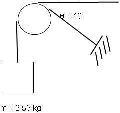The 2.55 Kg Block Shown Below Is Supported By A Ca