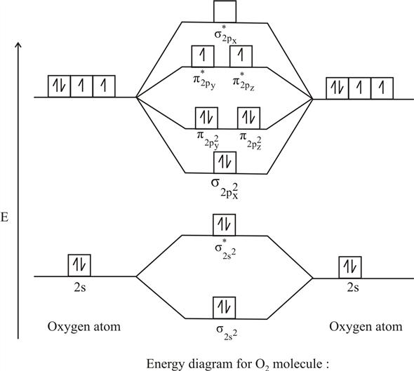 Solved: Using the molecular orbital model for a diatomic