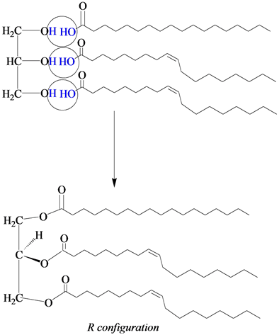 Solved: (a) Draw two possible triacylglycerols formed from