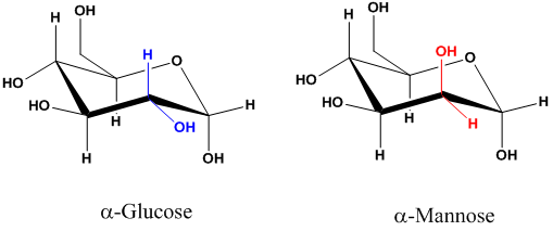Solved: Mannose has the same molecular formula as glucose