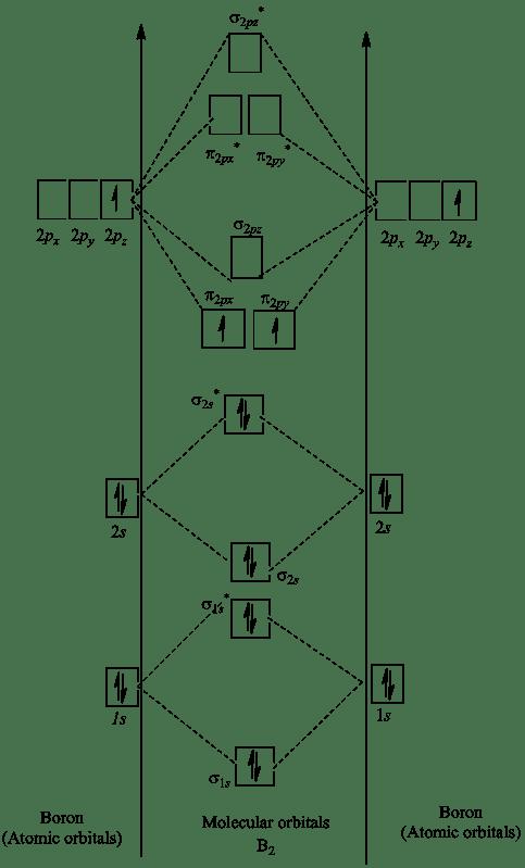 Molecular Orbital Diagram For B2 : molecular, orbital, diagram, Solved:, Place, Species, B2−, Order, Increasi..., Chegg.com