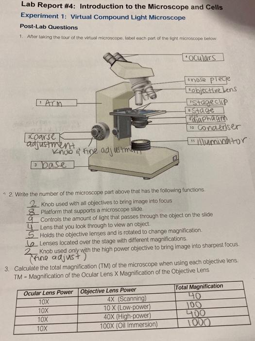 Virtual Microscope Lab Worksheet Answer Key : virtual, microscope, worksheet, answer, Solved:, Report, Introduction, Microscope, Chegg.com