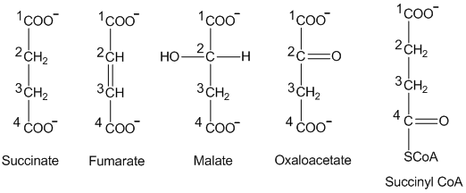 Solved: Identify the compounds in the citric acid cycle