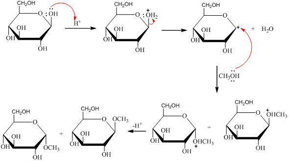 Solved: Treatment of β-D-glucose with methanol in the