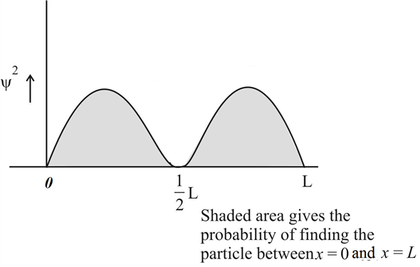 Solved: Sketch the probability density for the n = 2 state