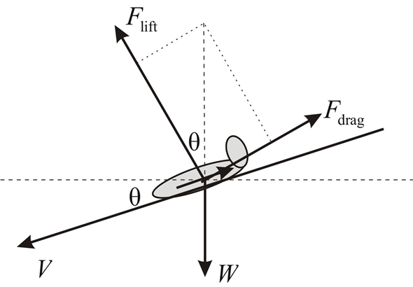Solved: In gliding (unpowered) flight, the lift and drag