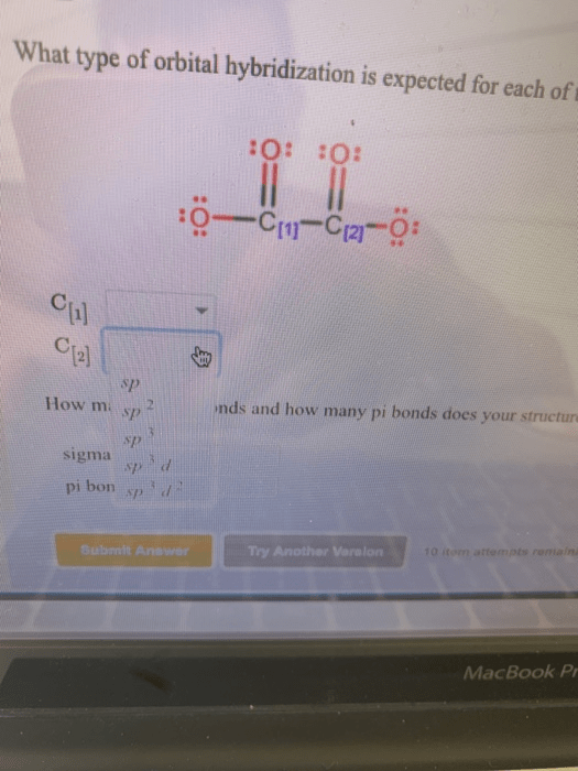 C2o4 2- Lewis Structure : lewis, structure, Solved:, Lewis, Structure, Oxalate, Shown, Below..., Chegg.com