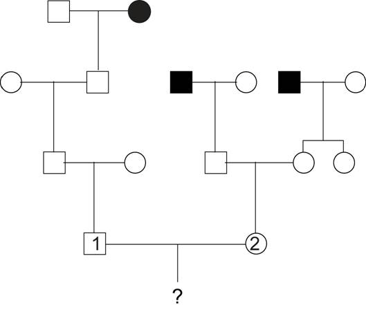 Solved: The Following Pedigree Shows Transmission Of Galac