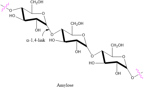 Solved: Amylose (a form of starch) and cellulose are both