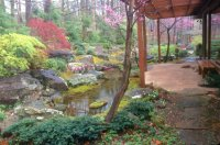 Seven Hills Japanese garden designer David Slawson brings