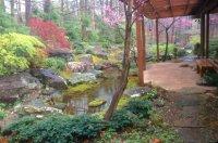 Seven Hills Japanese garden designer David Slawson brings ...