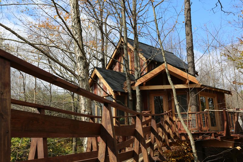 Treehouse Masters new season bird walk and Shaker