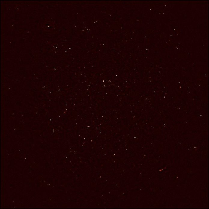 MeerKAT's First Light image. Each white dot represents the intensity of radio waves recorded with 16 dishes of the MeerKAT telescope in the Karoo desert. </p><p>More than 1,300 individual objects - galaxies in the distant universe - are seen in this image.