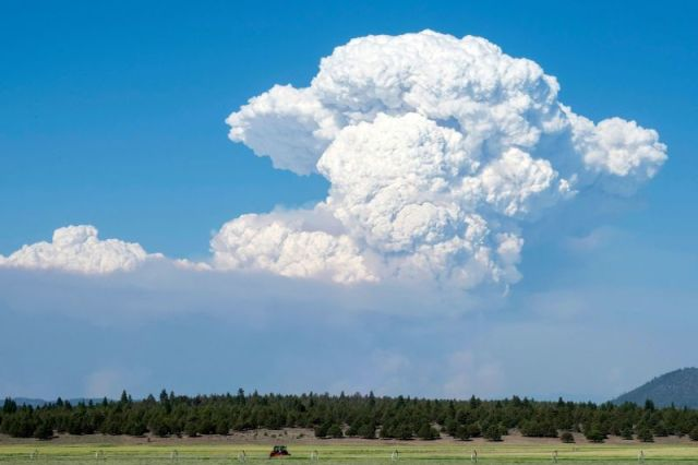 A cloud from the Bootleg Fire drifts into the air near Bly, Oregon, on July 16.