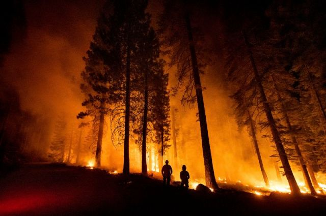 Cal Fire Capts. Tristan Gale, left, and Derek Leong monitor a firing operation in California's Lassen National Forest on July 26. Crews had set a ground fire to stop the Dixie Fire from spreading.