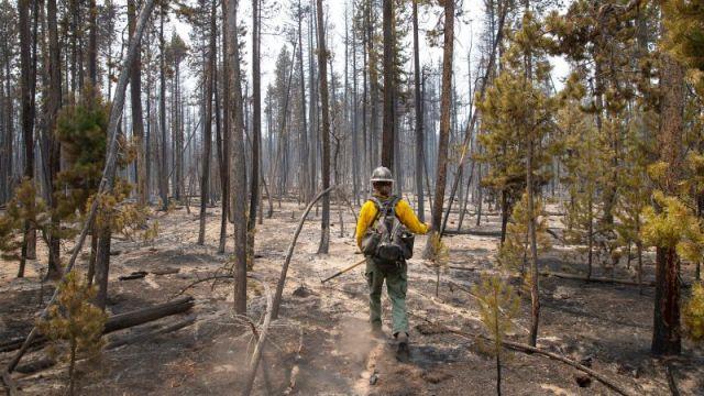 Firefighter Brentt Call walks through a burned-over area of the Bootleg Fire near Klamath Falls, Oregon, on July 27.