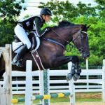 Equestrians mount up for new challenge