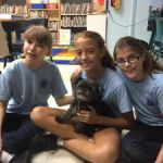 Girl Guides learn about rescuing dogs