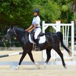 Dressage riders take on international challenge
