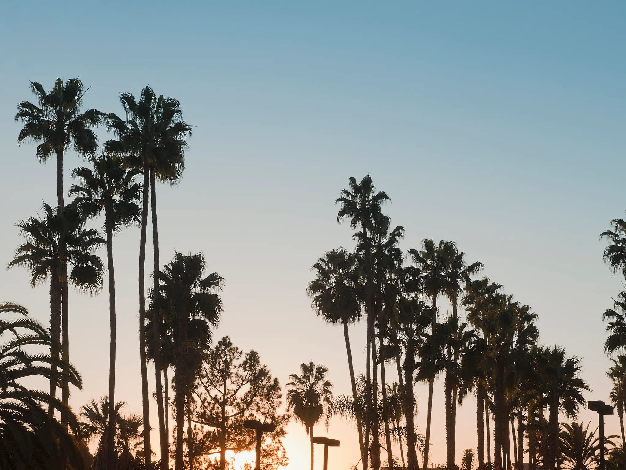 Minimalist Fall Wallpapers Things To Do In Los Angeles Attractions Amp Travel Guide