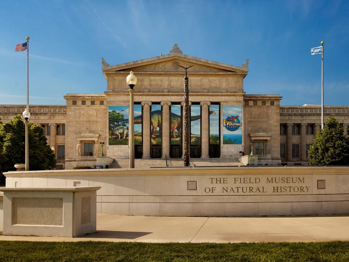 Field Museum Of Natural History Chicago - Culture