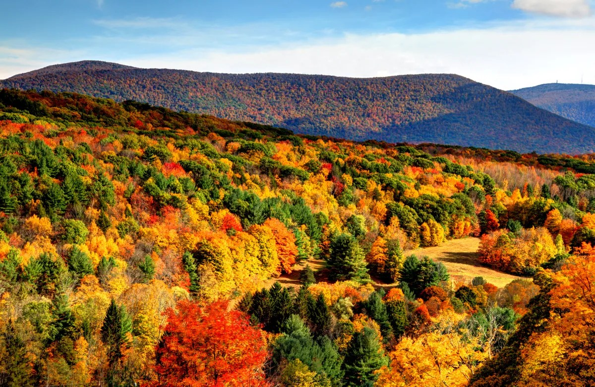 Pure Michigan Fall Wallpaper The Ultimate New England Fall Road Trip For The Best