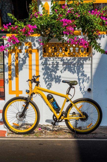 cycling in goa