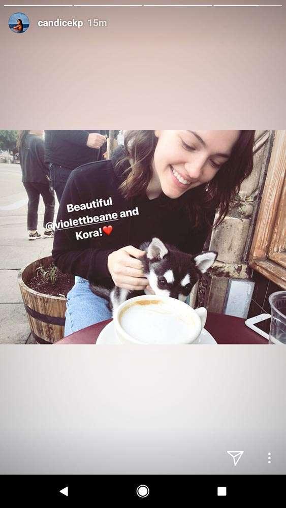 candice patton instagram story
