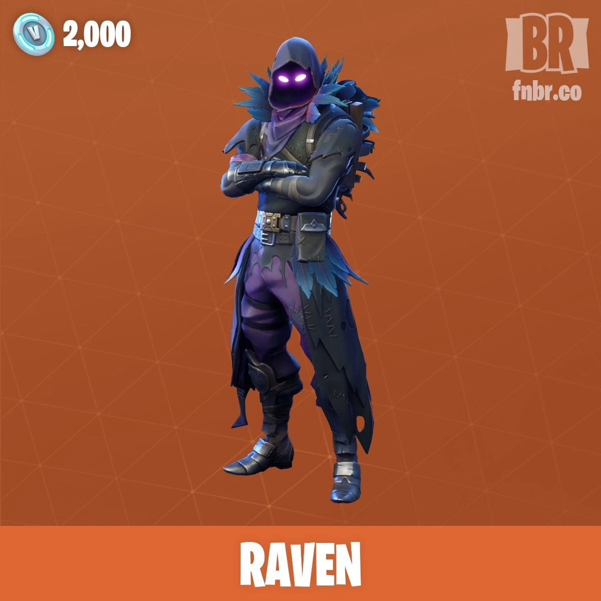 Fortnite Art Cool Raven Gamerpic