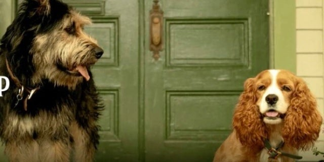 Disney Reveals First Look at LiveAction Lady and the Tramp